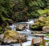 Corrente naturale dell'acqua di esposizione lunga immagini stock libere da diritti