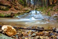 Corrente precipitante a cascata nella foresta Immagini Stock Libere da Diritti