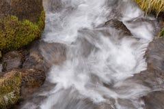 Corrente precipitante con i massi muscosi e l'erba coperta di ghiaccio che crescono sui bordi fotografie stock libere da diritti