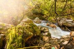Corrente scorrente nella foresta di autunno, in Fragas de Sao Simao, DOS Vinhos, Portogallo di Figueiro fotografie stock libere da diritti