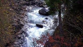 Corrente selvaggia del fiume fra le scogliere e le rocce, Enguri, Mestia, Svaneti, Georgia stock footage