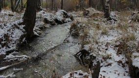 Corrente in una foresta nevosa di inverno archivi video