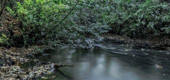 Corrente in Virginia Water, Surrey, Regno Unito Fotografia Stock Libera da Diritti