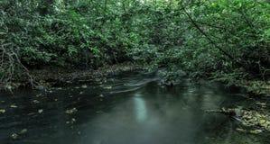 Corrente in Virginia Water, Surrey, Regno Unito Fotografie Stock