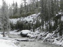 Corrente in Yellowstone NP fotografia stock libera da diritti