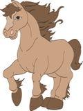 Correre del cavallo selvaggio Fotografia Stock