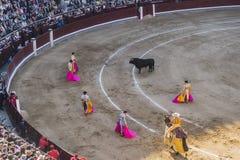 Corrida Bullfigt in Madrid Stock Photo