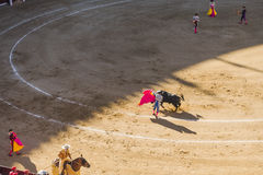 Corrida Bullfigt in Madrid Royalty Free Stock Photography