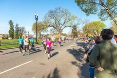 Corrida-caminhada de Credit Union Cherry Blossom 5K Fotos de Stock Royalty Free