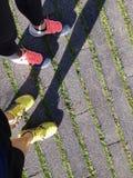 Corrida da manhã Foto de Stock