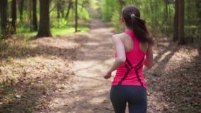 Corrida da mulher da aptidão na floresta ensolarada da mola filme