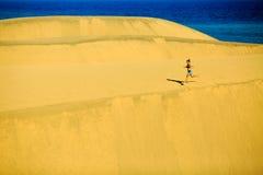 Corrida da mulher feliz na praia e nas dunas Fotos de Stock