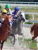 Corrida de cavalos. Foto de Stock Royalty Free