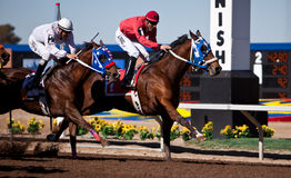 Corrida de cavalos Imagem de Stock