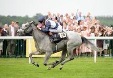 Corrida de cavalos Foto de Stock Royalty Free