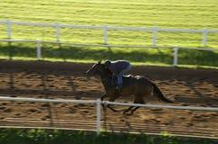 Corrida de cavalos fotografia de stock