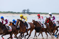 Corrida de cavalos de Sanlucar de Barrameda Carrera de Caballos Imagens de Stock