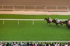 Corrida de cavalos na frente deles públicos Imagens de Stock Royalty Free