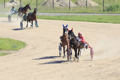 Corrida de cavalos no podvorie de Sibirskoe do hipódromo Foto de Stock Royalty Free