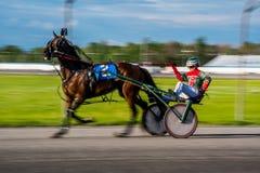 Corrida de cavalos de Ottawa imagens de stock royalty free