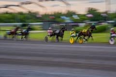 Corrida de cavalos de Ottawa foto de stock