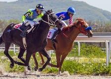 Corrida de cavalos para o prêmio do Imagem de Stock Royalty Free