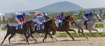 Corrida de cavalos para o prêmio do Imagens de Stock
