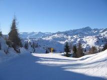 Corrida de esquí Fotografía de archivo libre de regalías