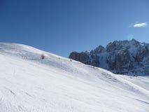 Corrida de esquí de las dolomías Fotografía de archivo libre de regalías