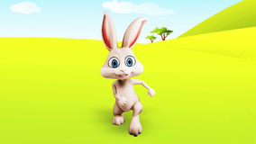 Corrida do coelhinho da Páscoa video estoque