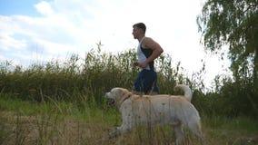 Corrida do homem novo exterior com seu cão Labrador ou golden retriever que movimentam-se com seu proprietário masculino na natur video estoque