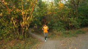 Corrida em Autumn Park vídeos de arquivo