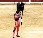 Corrida espagnole Les attaques de taureau exaspérées le toréador L'Espagne 2017 07 25 2017 Vinaros Corrida monumental de toros Image libre de droits
