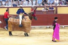 Corrida espagnole Picador avec une lance sur un cheval Les attaques de taureau exaspérées le toréador L'Espagne 2017 07 25 2017 V Photo libre de droits