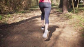 Corrida f?mea do corredor na floresta ensolarada da mola vídeos de arquivo