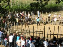 Corrida and Impact of poverty on poor neighbourhoods in Central America. Bullfights Royalty Free Stock Photo