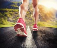 Corrida no asfalto Imagens de Stock Royalty Free