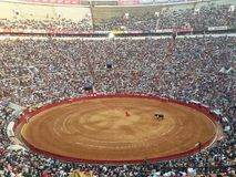 Corrida in Sevilla in southern Spain Royalty Free Stock Photography