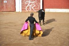 Corrida show in Spain. Toreador and and a bull on a bullring during corrida show in Fontanar, Spain Stock Photos