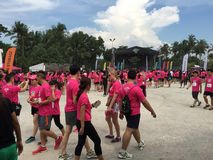Corrida Singapura 2015 da música Fotografia de Stock Royalty Free