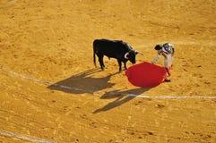 Corrida, Spain. Plaza de Toros de Priego de Cordoba. Unidentified member of corrida. Apr 07, 2012 in Priego de Cordoba (Spain Royalty Free Stock Photography