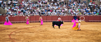 Corrida toreros at the Real Maestranza de Caballeria in Seville, Royalty Free Stock Images