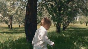 Corridas da criança na grama verde O rapaz pequeno toma a primeira etapa na grama fresca no parque da cidade video estoque
