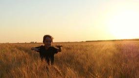 Corridas de riso felizes de uma criança à câmera Um rapaz pequeno corre entre as orelhas maduras do trigo Fundo do por do sol vídeos de arquivo
