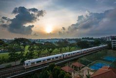 Corridas de Skytrain na cidade no amanhecer Imagem de Stock Royalty Free