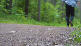 Corridas do homem ao longo do trajeto na floresta que a câmera dispara de baixo de video estoque