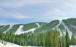 Corridas y elevación de esquí Imagen de archivo libre de regalías
