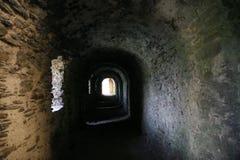 Corridoio del Dungeon Immagini Stock Libere da Diritti
