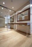 Corridoio del progettista Immagine Stock