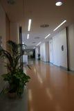 Corridoio dell'ufficio fotografie stock libere da diritti